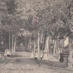 claraspad5-1916