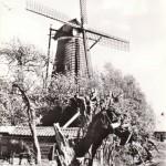 molen_de_hoop2