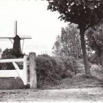 molenhof1