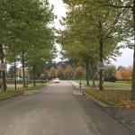 fietspad-op-Stenevate